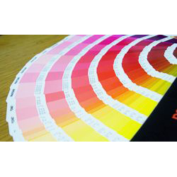 Label Printing Services - Digital, 4 Color, Embossed, UV Coated, Hot